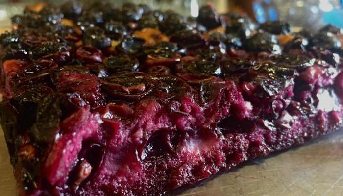 schiacciata con uva gastronomia firenze